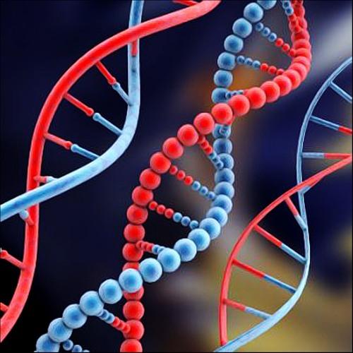 мини тест егэ по биологии: